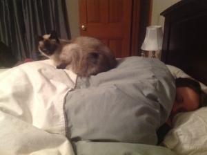 Meesha's Post... on top of my hip, as I sleep.